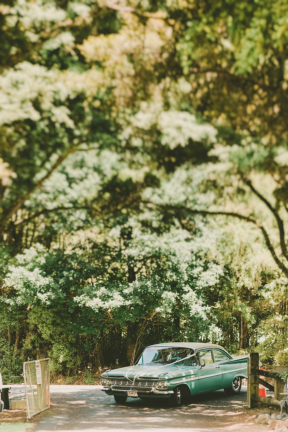 Hunua Falls Auckland Wedding photographer rainy day